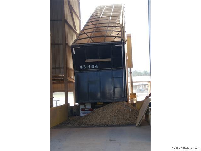 vrachtwagens vol pinda's worden hier gelost en opgeslagen