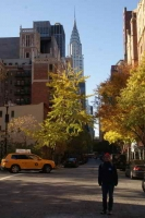 Chrysler Building op de achtergrond