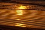 de vloedlijn lijkt wel van goud tijdens de zonsopkomst