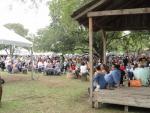 Gruene, muziekfestival