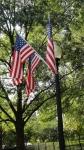 amerikaanse vlaggen.jpg