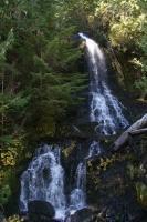 op weg naar Mount Rainier