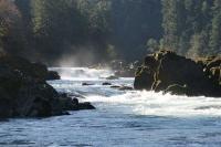 rivier langs de Roque Umpqua Oregon Scenic Byway