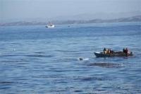 voor de kust van Monterey; zee-leeuw houdt de mannen in de bood vanuit het water in de gaten